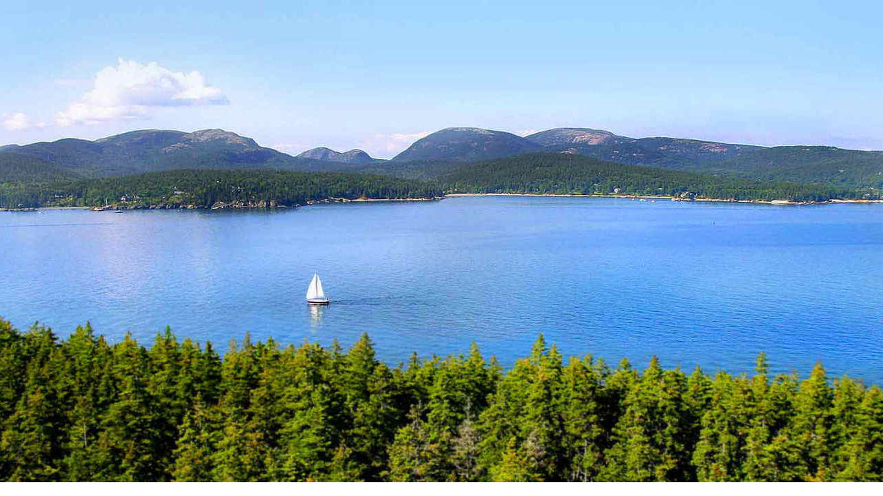 Mount Desert Island Real Estate And Rentals